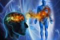 Capire il funzionamento del nostro organismo per poter giungere alla guarigione! di Piero Tucceri