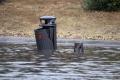 Prima la siccità, adesso l'alluvione... povera Italia.