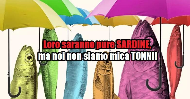 Le sardine, un movimento… 'spintaneo'!