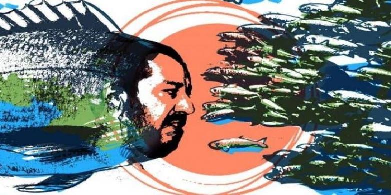 Feltri: Il capo dei pesci in barile, non vuole trasformare le sardine in un partito. Ma allora che ce ne facciamo di tante alici disorganizzate?