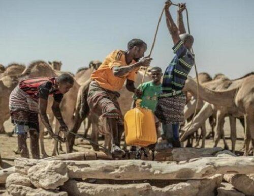 Giornata Mondiale della lotta alla desertificazione.