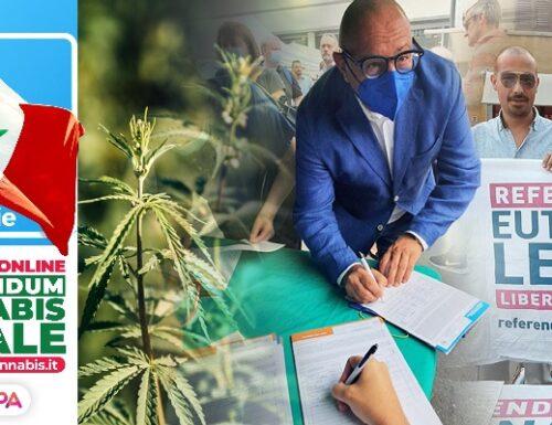 Eutanasia e cannabis.